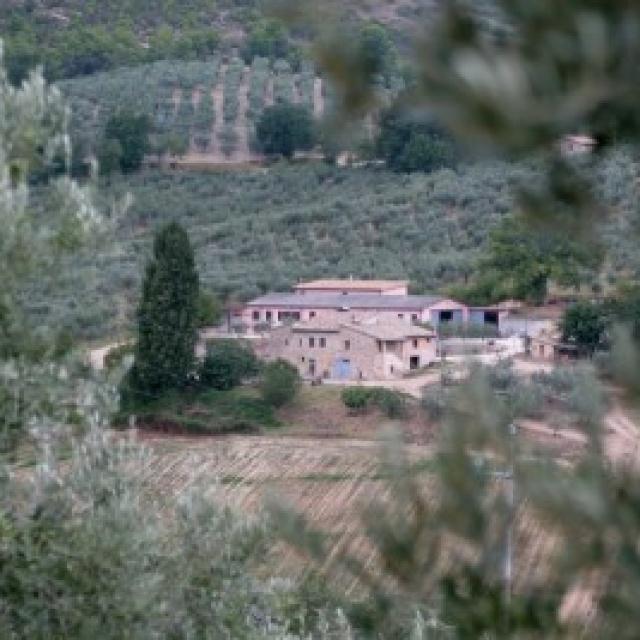 Azienda Agraria Pian della Noce